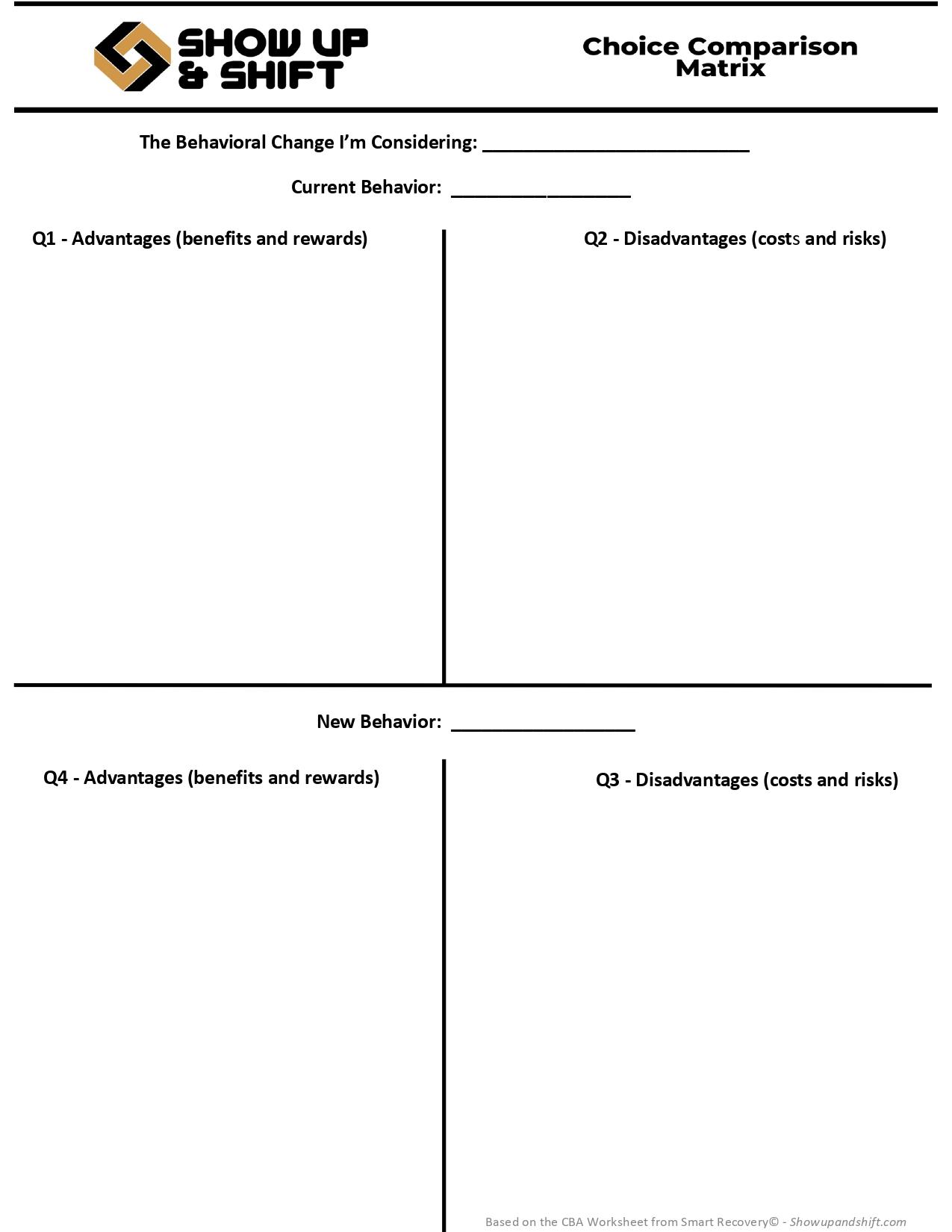 Choice Comparison Matrix Example